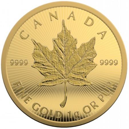 1 MapleGram Gold Coin
